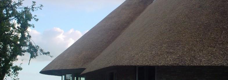 rietdekkers bedrijf noord nederland, friesland
